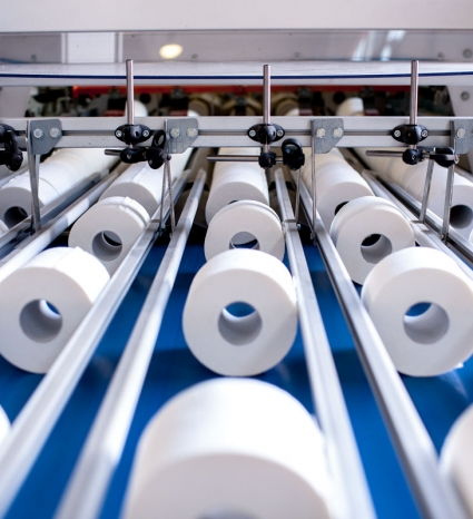 Paper Service S.r.l. rotoli